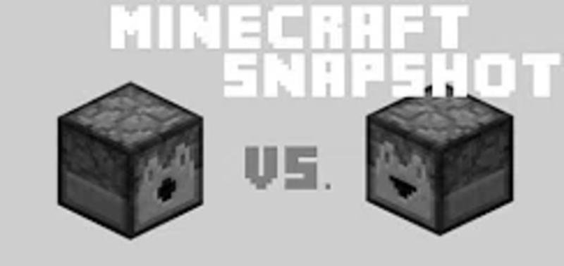minecraft dispenser vs dropper