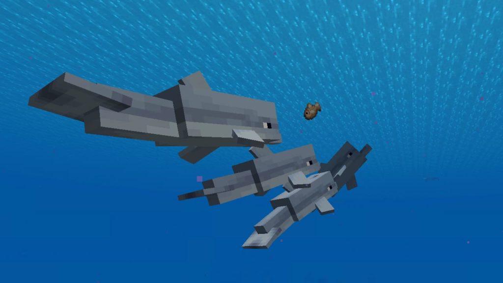 minecraft dolphin despawn