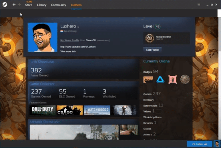 steam skin not showing up